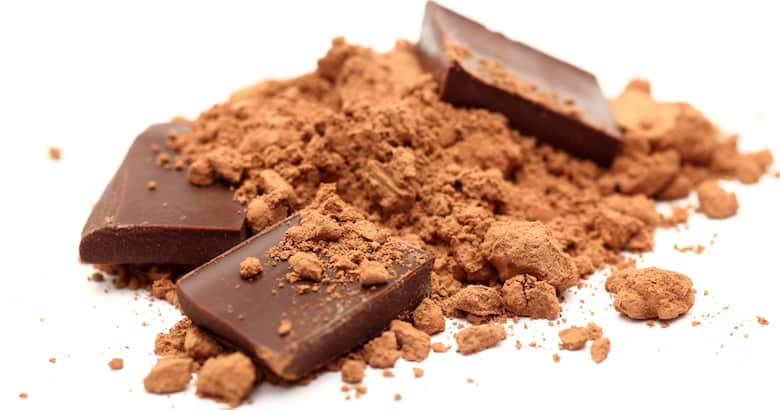 Pieces of chocolate in cocoa powder